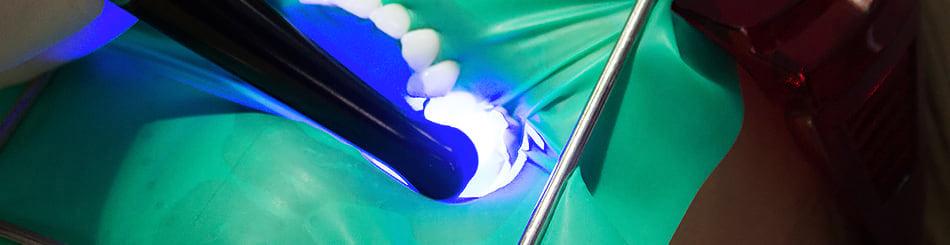 osetreni zubu igor kuczinsky
