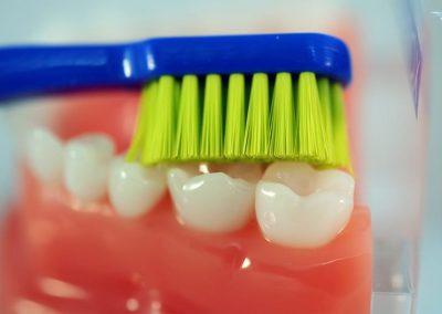 čištění zubů zubním kartáčkem curaprox